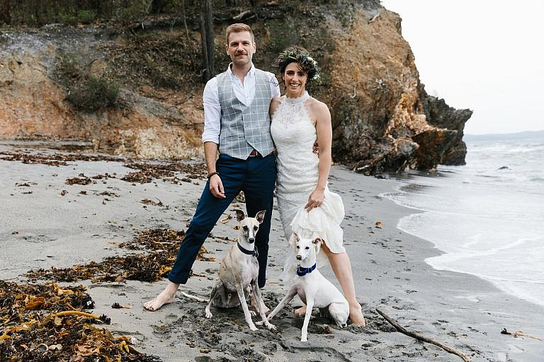 Bride and groom with their dogs at the beach