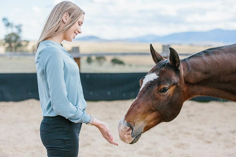 Woman holds hand out to horse